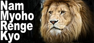 Nam Myoho Renge Kyo is like the roar of a Lion